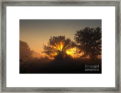 In A Silent Way Framed Print by Everett Houser