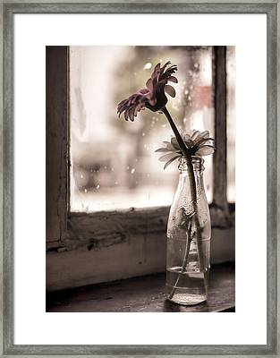 In A Strange Place Framed Print