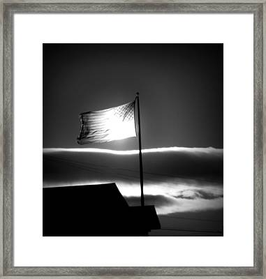 In All Her Glory Framed Print by Jennifer Compton