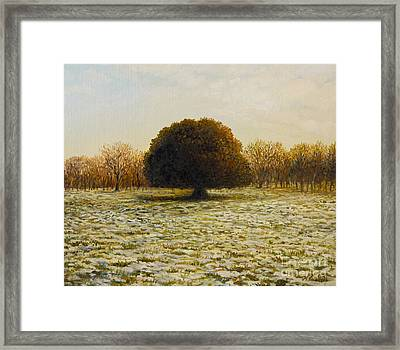 In Anticipation Of The Spring Framed Print by Kiril Stanchev