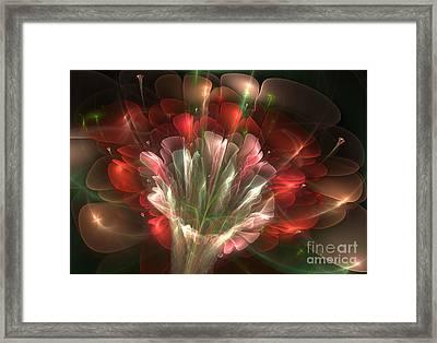 In Bloom Framed Print by Svetlana Nikolova