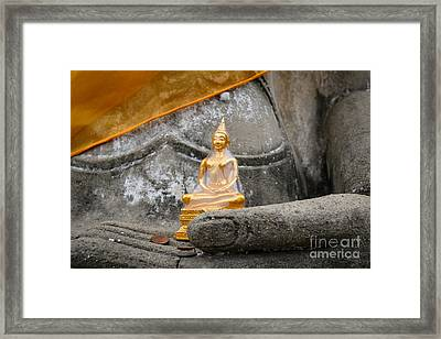 In Buddha's Hands I Framed Print by Dean Harte