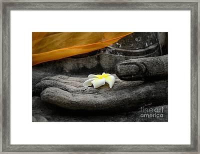 In Buddha's Hands II Framed Print