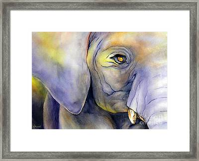 In Captivity Framed Print