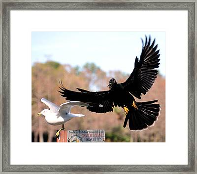 In Coming Framed Print by Julie Cameron