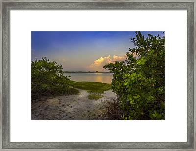 In Coming Tide Framed Print by Marvin Spates