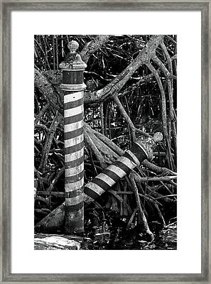 In Despair Framed Print