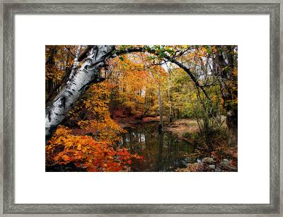 In Dreams Of Autumn Framed Print