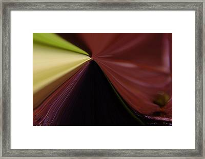 In Fast Flight From A Bugs Eye  Framed Print by Jeff Swan