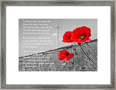 In Flanders Fields Framed Print by Gill Billington
