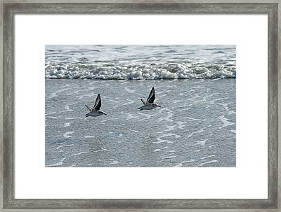 Framed Print featuring the photograph In Flight II by Greg Graham