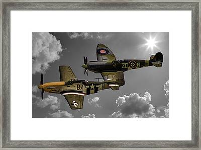 In Flight Framed Print by Martin Newman