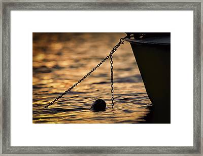 In For The Night Framed Print