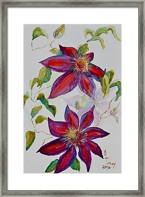 In Grandpa's Garden Framed Print by Beverley Harper Tinsley