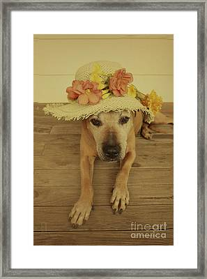 In Her Easter Bonnet Framed Print