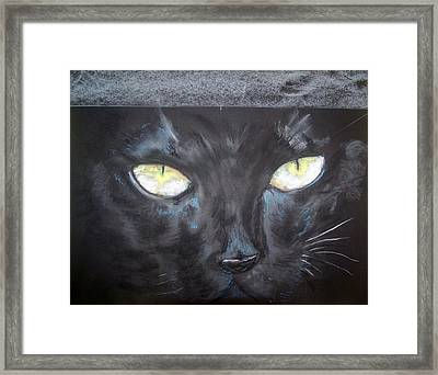 In Hiding Framed Print