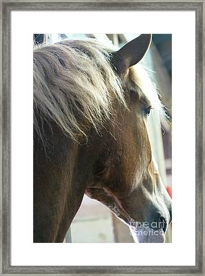 Framed Print featuring the photograph In His Farthest Wanderings Still He Sees by Linda Shafer
