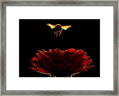 In His Light.. Framed Print