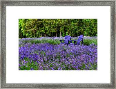 In Lavender Framed Print