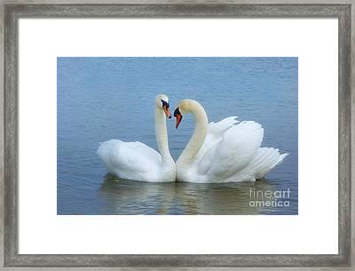 In Love                         Framed Print by Marlena Nowaczyk