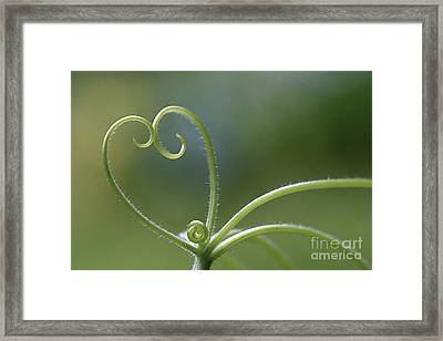 In Love With Nature Framed Print by Maria Ismanah Schulze-Vorberg