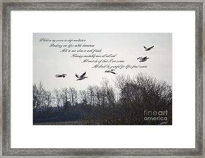 In My Cocoon Framed Print by Gero