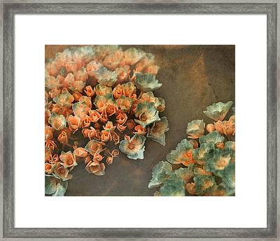 In My Dreams Framed Print by Bonnie Bruno