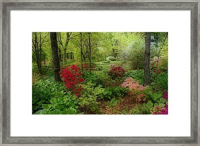 In My Dreams Framed Print by Sandy Keeton