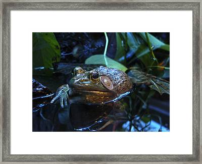 Framed Print featuring the photograph In My Heart I'm A Prince by Rhonda McDougall