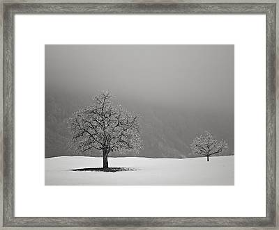 Framed Print featuring the photograph In Perspective by Antonio Jorge Nunes