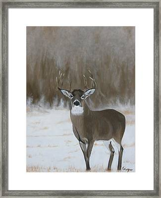 In Plain Sight Framed Print by Jean Yves Crispo