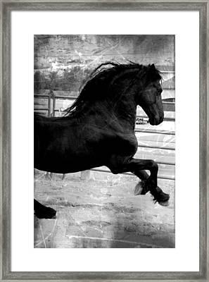 In Power Framed Print by Royal Grove Fine Art