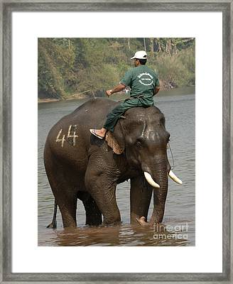In Reverse Gear Framed Print by Bob Christopher