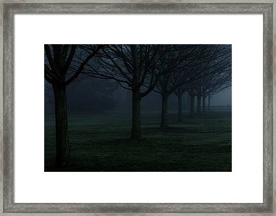 In Rows Framed Print by Andrea Galiffi