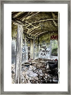 In Ruins Framed Print by Erika Weber
