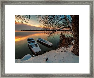 In Safe Harbor Framed Print