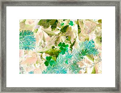 In Seasons Past Framed Print by Bonnie Bruno