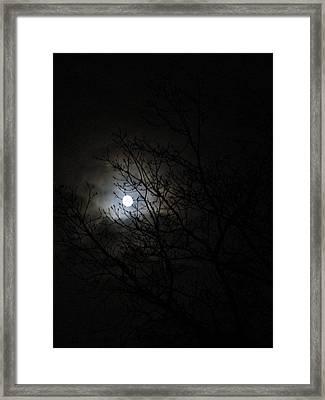 In Sight ......insight Framed Print by Rosita Larsson