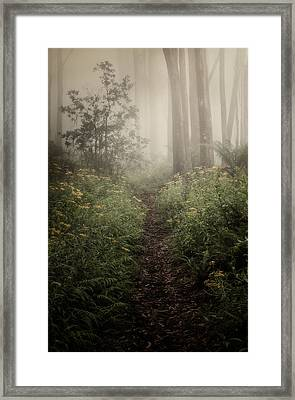 In Silence Framed Print
