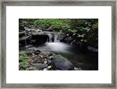 In Slow Pools Where Serenity Abounds Framed Print by Jeff Swan