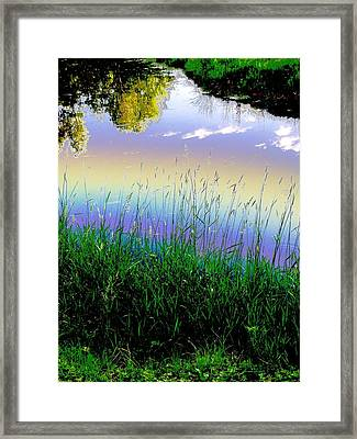 Framed Print featuring the photograph In Spirit by Diane Miller