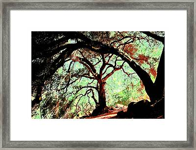 In The Abstract Framed Print by Regina Avila