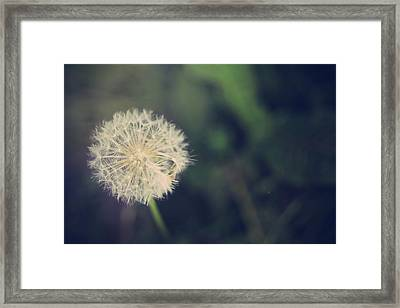 In The Afterglow Framed Print by Laurie Search