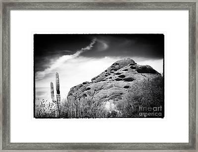 In The Arizona Desert Framed Print