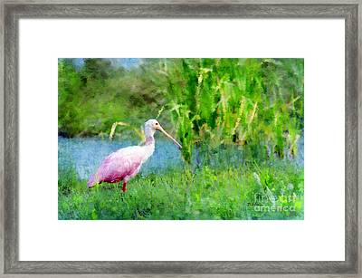 Framed Print featuring the photograph In The Bayou #1 by Betty LaRue