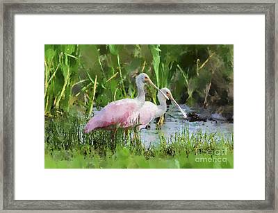 Framed Print featuring the photograph In The Bayou #3 by Betty LaRue