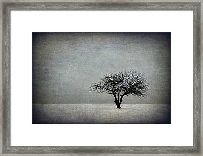 In The Bleak Of Midwinter Framed Print by Evelina Kremsdorf