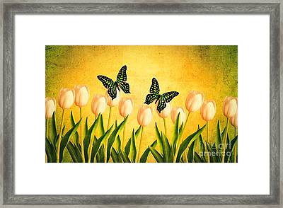 In The Butterfly Garden Framed Print