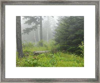 In The Clouds Framed Print by Linda Brown