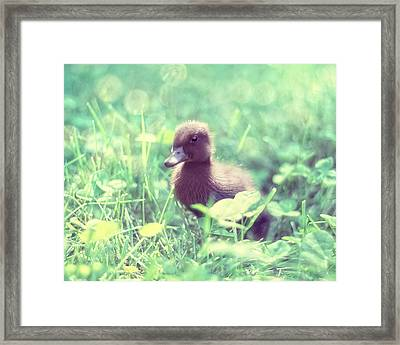 In The Clover Framed Print by Amy Tyler